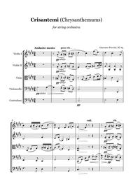 G. Puccini - CRISANTEMI - string orchestra, score and parts