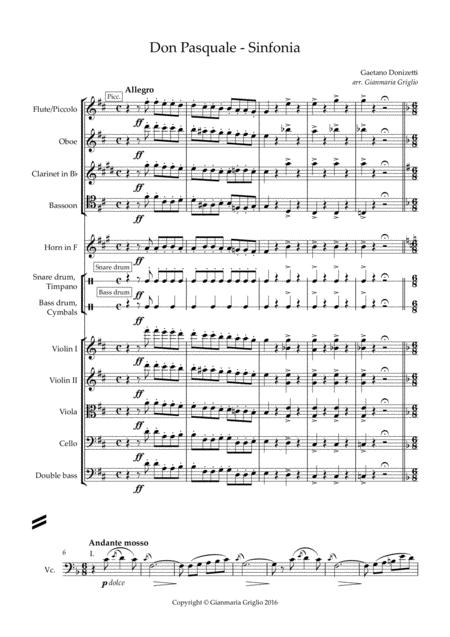 Don Pasquale - Sinfonia - arr. chamber orchestra