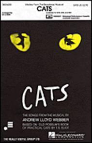 Cats (Medley) - ShowTrax CD