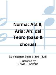 Norma: Act II, Aria: Ah! del Tebro (bass & chorus)