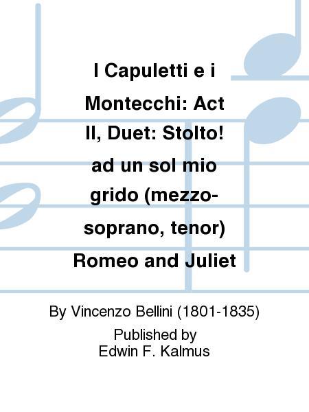 I Capuletti e i Montecchi: Act II, Duet: Stolto! ad un sol mio grido (mezzo-soprano, tenor) Romeo and Juliet