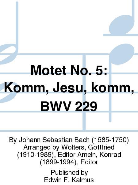 Motet No. 5: Komm, Jesu, komm, BWV 229