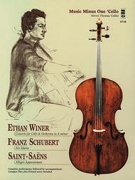 Ethan Winer, Franz Schubert, and Saint-Saens
