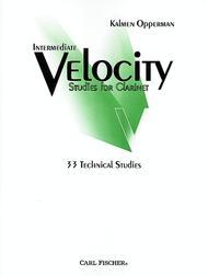Intermediate Velocity Studies