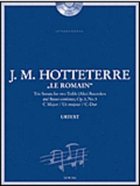 Trio Sonata for two Treble (Alto) Recorders and BC
