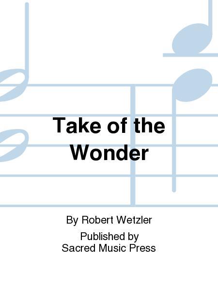 Take of the Wonder