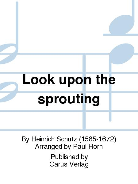 Look upon the sprouting (Sehet an den Feigenbaum)