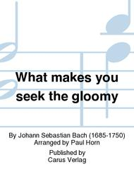 What makes you seek the gloomy (Was willst du dich betruben)