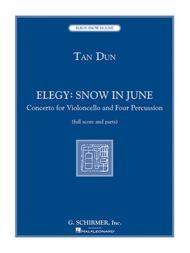 Elegy: Snow in June
