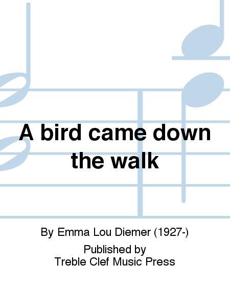A bird came down the walk