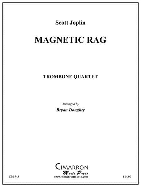 Magnetic Rag
