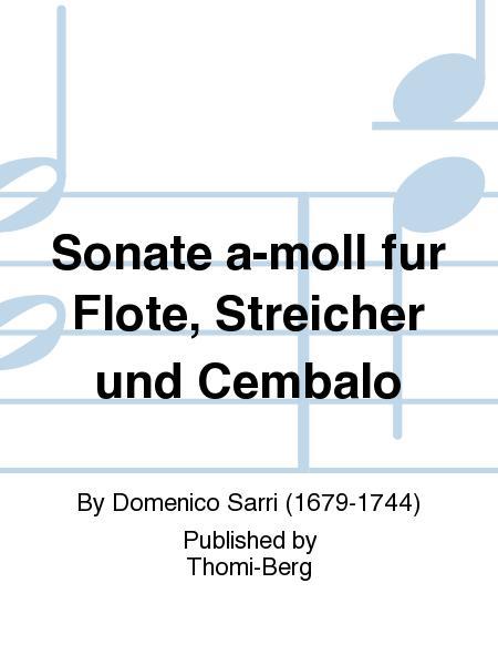 Sonate a-moll fur Flote, Streicher und Cembalo