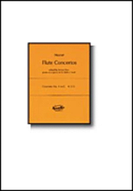 Concerto No. 1 in G, K.313