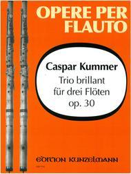 Trio brillant, Op. 30
