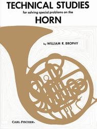 Technical Studies for Solving Problems on the Horn